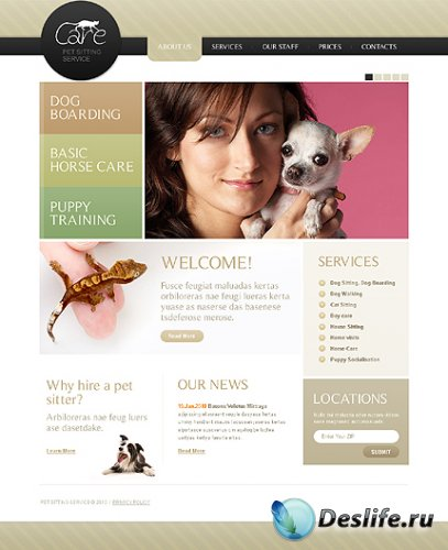 Care Pet Free Website Template