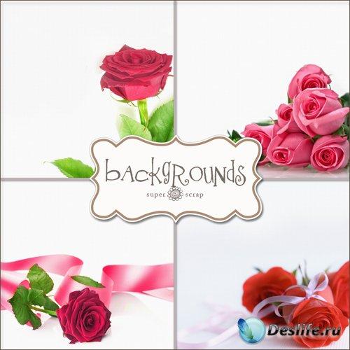 Розы - Фоны для фотомонтажа (Roses Backgrounds)