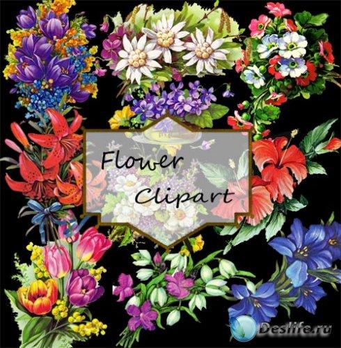 Цветочный клипарт