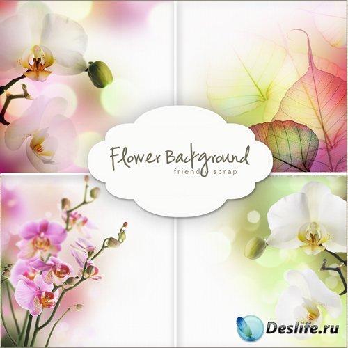Цветочные фоны для фотошопа (Flowers Backgrounds #16)