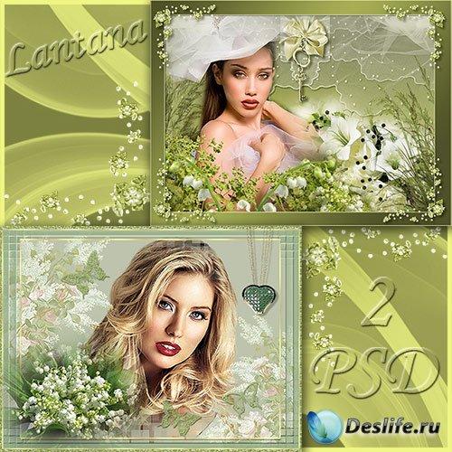 Рамки для фотошопа - Цветы весны