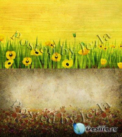 PSD Исходники - Полевые Цветы, Маки