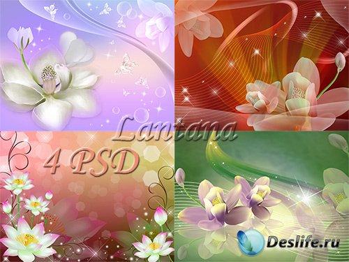 PSD исходники - Сказочная нимфея