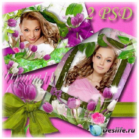 Рамки для Photoshop - Розовые тюльпаны