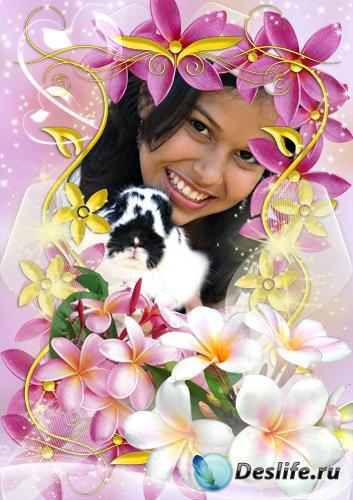 Рамка для фото - Exotic flowers