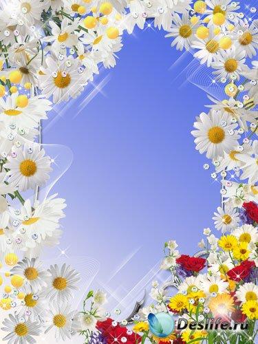 Рамка для фотошопа - Яркие краски лета