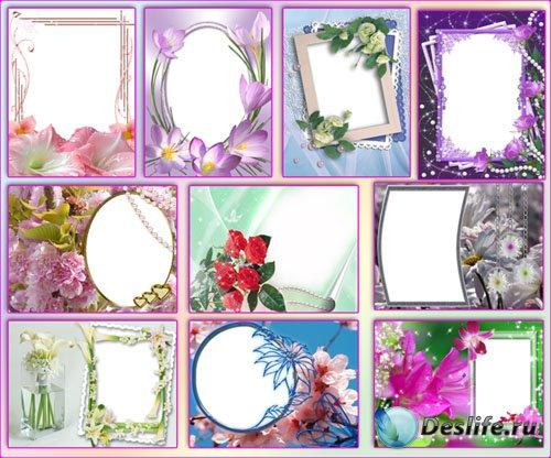 Рамки для фотошопа - Цветочные