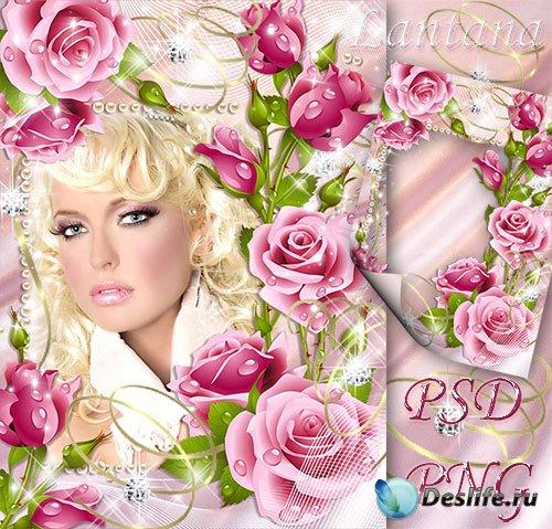 Рамка для фотошопа - Розовый каскад