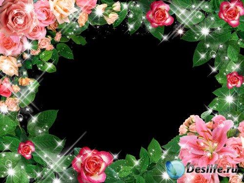 Рамка для фотошопа - Розы и листья