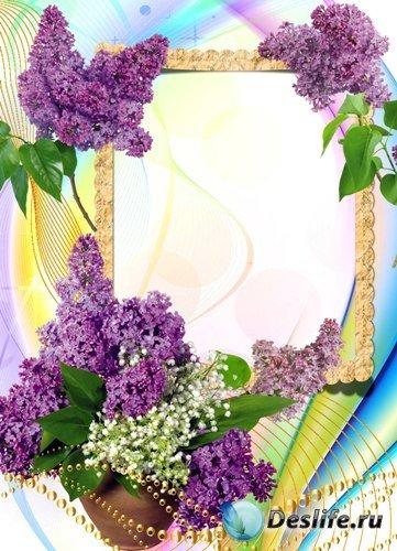 Рамка для фото - Сирень в цвету