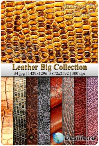 Коллекция Текстур - Кожа