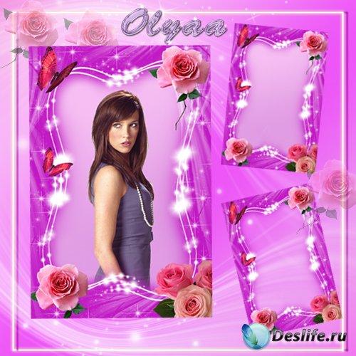 Рамка для фотошопа - Прелестные розовые розы