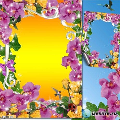 Цветочная рамка для фотошопа – Яркое чувство