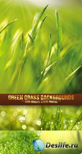 Фотоклипарт - фоны с зеленой травой