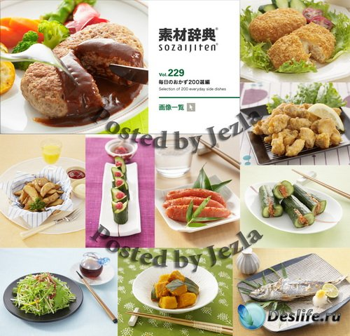 Datacraft Sozaijiten Vol.229 - Selection of 200 Everyday Side Dishes
