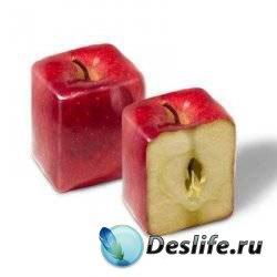 Квадратура яблок - Видеоурок для фотошопа