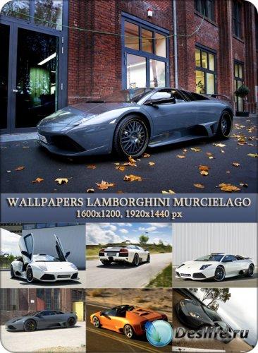 Wallpapers Lamborghini Murcielago