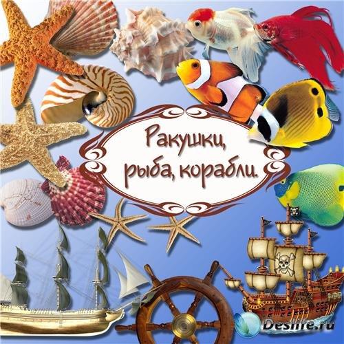 38 png Ракушки, рыбы, корабли