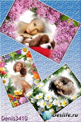Три цветочные рамки для девушек - Здравствуй лето