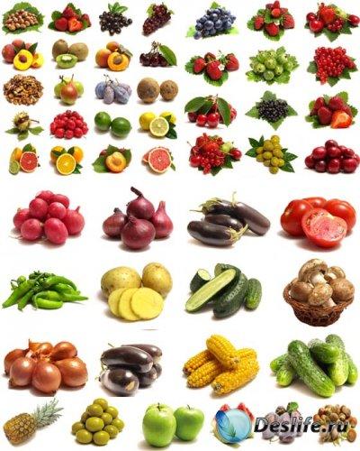 Растровый клипарт - Набор овощей и фруктов