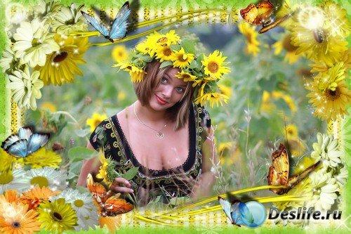 Фоторамка - Солнечные летние цветы