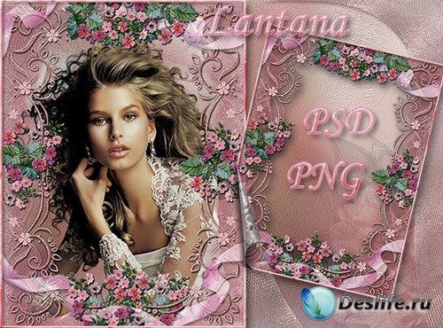 Рамки для фотошопа - Розовый закат