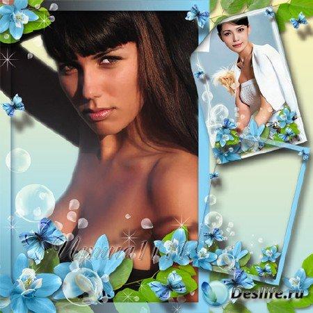 Рамка для фотошоп - Нежность голубых цветов