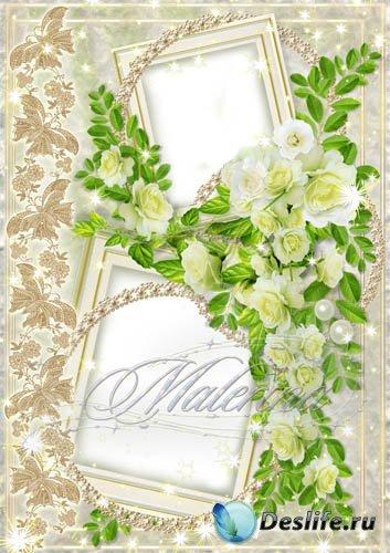 Рамка для photoshop -   Нежность чайных  роз
