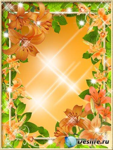 Рамка для фото - Лилия нежный красивый цветок