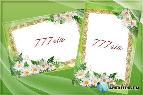 Женская цветочная рамка – Ромашки в зелени