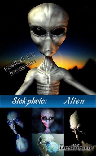 Фото сток: Инопланетяне