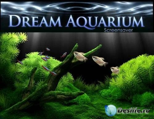 Dream Aquarium Screensaver 1.24 21 + Aquariums Portable