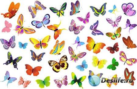 Клипарт - Радужные бабочки