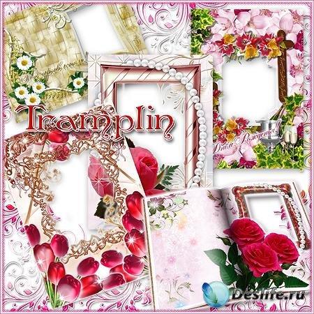7 Рамок для Ваших фото – Розы, Ромашки, Тюльпаны - Цветы