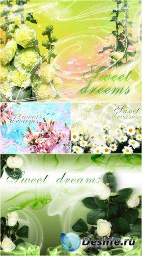 PSD Исходники - Красочные Мечты
