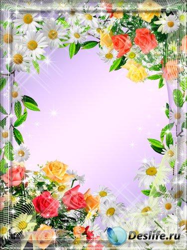 Рамка для фотошопа - Розы и ромашки