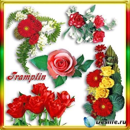 Клипарт Цветы - Символ женской красоты
