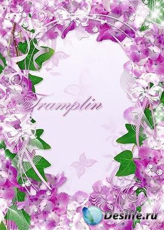 Рамка для ваших фото - Сиреневые цветочки