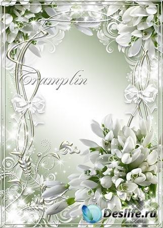 Весенняя рамка - Белый цвет подснежника и нежность