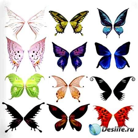 Кисти для фотошопа - Крылышки бабочек