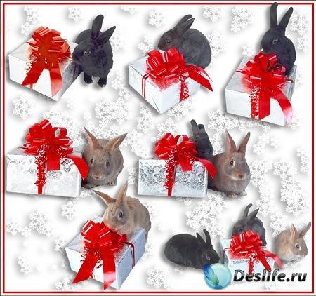 Клипарт – Новогодние Кролики с подарком