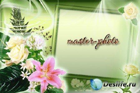 Рамка для фотошопа - Белые Розы