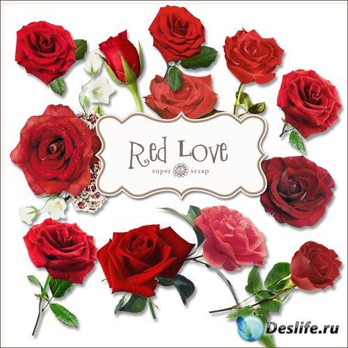 Скрап-набор - Красные Розы