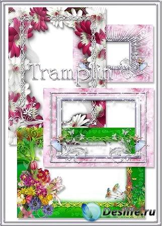 Сборник рамок для фотошопа – Пурпурное, белое, зеленое