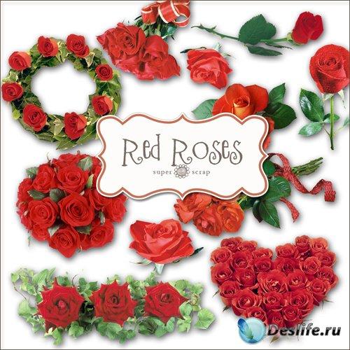 Романтический Скрап-набор - Красные Розы