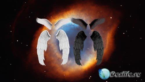PSD исходники - Ангельские крылья в двух расцветках