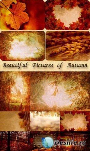 Фоны для фотошопа - Очаровательные картины осени
