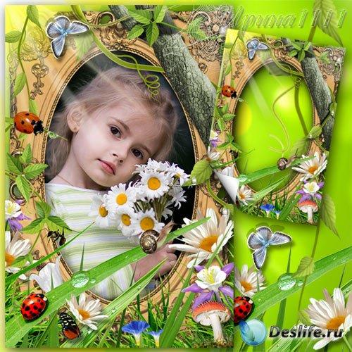 Рамка для фотошоп - Летняя полянка
