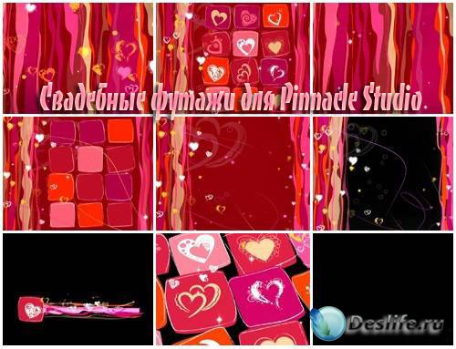 Свадебные футажи для Pinnacle Studio – Страсти по розовому