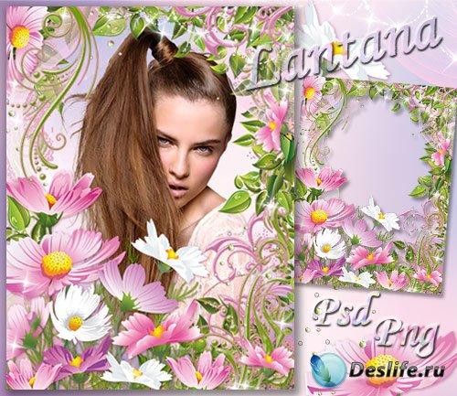 Рамка для фото - День рождается с рассветом нежно-розовым букетом